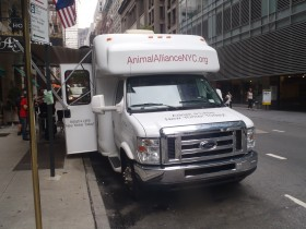 Mayor's Alliance Truck